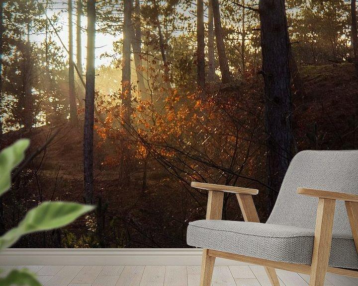 Beispiel fototapete: Gegenlicht auf den Blättern von Martijn Tilroe