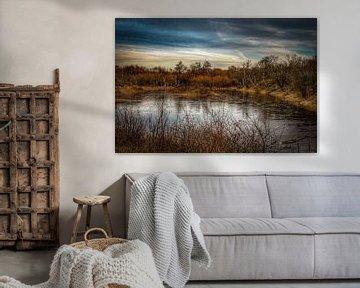 Natuurgebied Waterbos Rockanje van Marjolein van Middelkoop