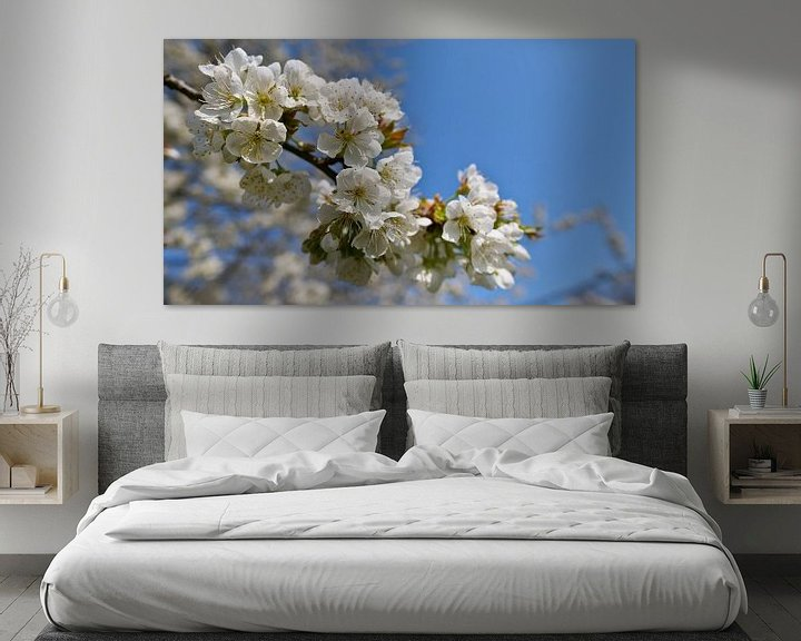 Sfeerimpressie: close-up van japanse kersenboom met witte bloemen van Timon Schneider