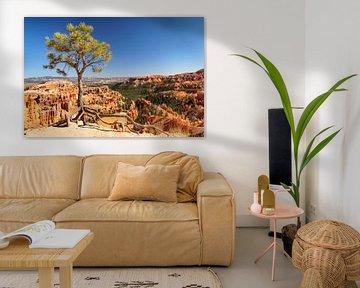 Inspiration Point, Bryce Canyon, Utah, VS van Markus Lange