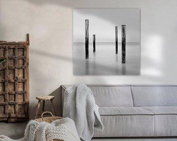 Palendorp Petten - 2 von Martin van Lochem