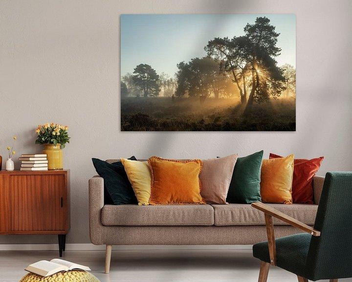 Sfeerimpressie: zonlicht in de bomen van Hetwie van der Putten