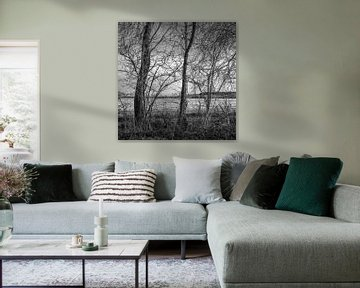 Oranjewoud, Pays-Bas, 2021 sur Anna den Broeder