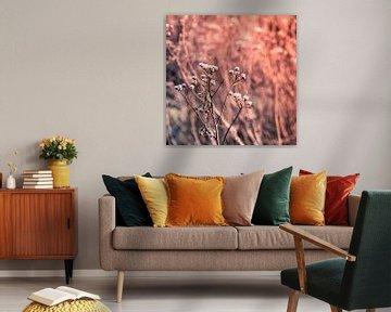 Einsamer Zweig mit getrockneten Blumen im Winter von Idema Media