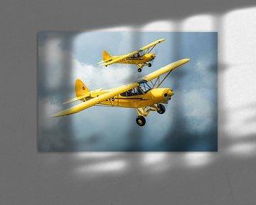 Avion Piper Super Cub en formation sur Planeblogger