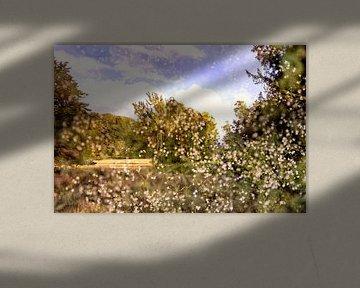 Utrechts landschap met bloesem van Tot Kijk Fotografie: natuur aan de muur