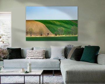 Moravian slopes van Guy Lambrechts