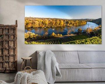 Wijngaarden en de Neckar in Stuttgart van Werner Dieterich