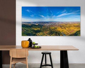 Luchtfoto panorama wijngaarden in Stuttgart van Werner Dieterich