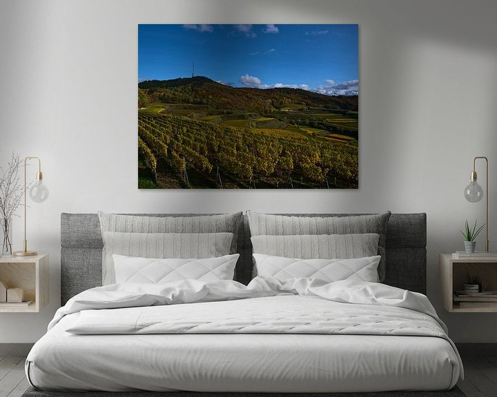 Sfeerimpressie: Panoramisch uitzicht over de wijngaardterrassen van de Kaiserstuhl in de herfst van Timon Schneider