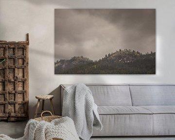 Bergen Pålsbufjorden - Geilo (Noorwegen) van Marcel Kerdijk