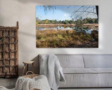 natuurgebied bij gildehaus van Compuinfoto .