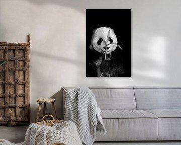 Großer Panda von Esther van Engen