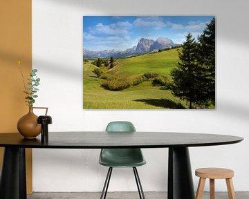 Dolomieten landschap. van Jurgen Maassen