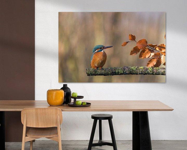 Sfeerimpressie: IJsvogel in de herfst van Ans Bastiaanssen
