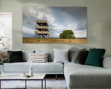 Uitkijktoren Drents-Friese wold (Nederland) van Marcel Kerdijk