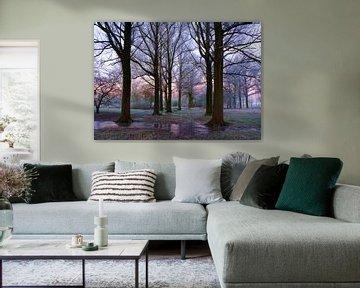 Paysage, gel dans les arbres. sur Marcel Kieffer