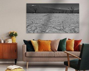Schwarzweißaufnahme des ausgetrockneten Bodens im Sossuvlei mit toten Bäumen von Timon Schneider