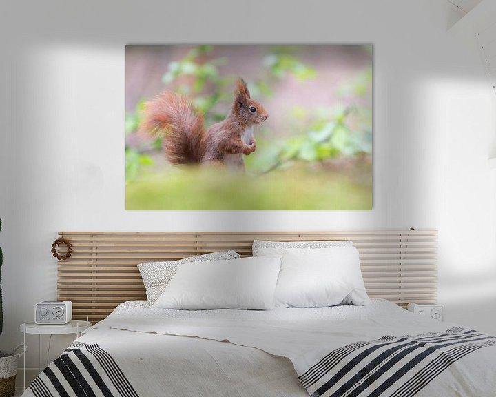 Beispiel: Eichhörnchen mit Pferdeschwanz von Cindy Van den Broecke