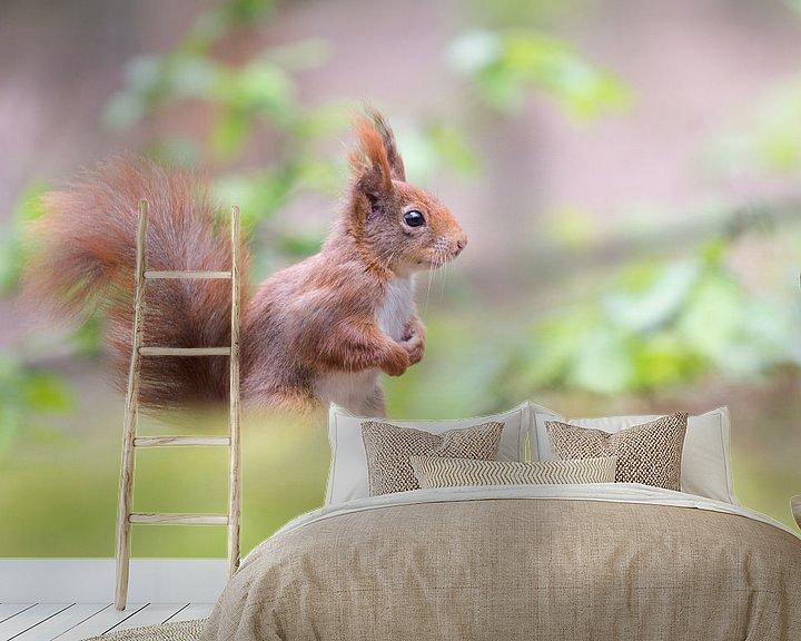 Beispiel fototapete: Eichhörnchen mit Pferdeschwanz von Cindy Van den Broecke