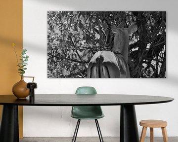 Schmusende Impalas in schwarz-weiß von Timon Schneider