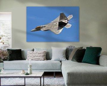 F-22 Raptor van Rogier Vermeulen