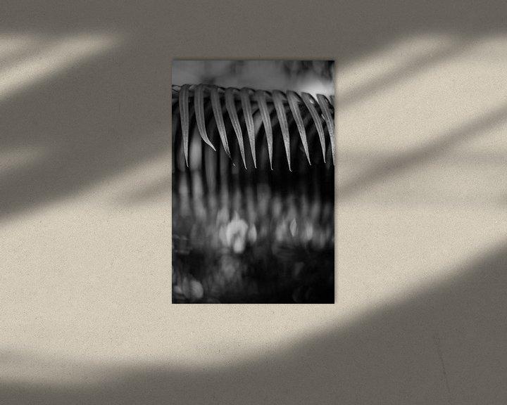 Beispiel: Pflanzen abstrahiert von Rene  den Engelsman
