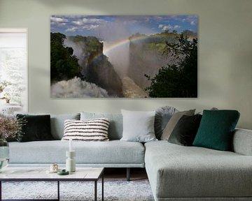 Regenboog overspant Victoria Falls in Afrika van Timon Schneider