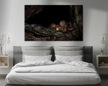 Herfstsfeer in het bos van Miranda Palinckx