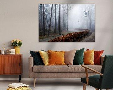 mistig bos met mooie lantaarn van Karin vanBijleveltFotografie