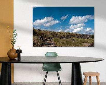 duinen en blauwe lucht van Compuinfoto .