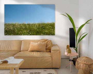 groen gras en blauwe lucht van ChrisWillemsen