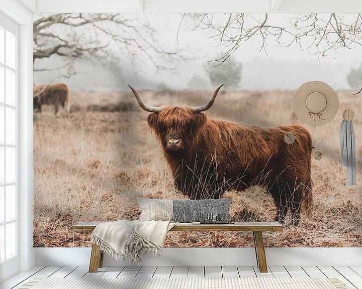 Sfeerimpressie behang: Schotse Hooglanders van GoWildGoNaturepictures