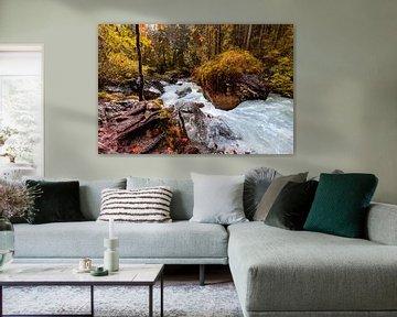 L'automne dans la forêt enchantée sur Dirk Rüter