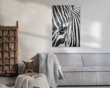 Zebra von Annette van Dijk-Leek