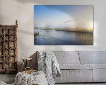 Zwanenmeer van Creacas
