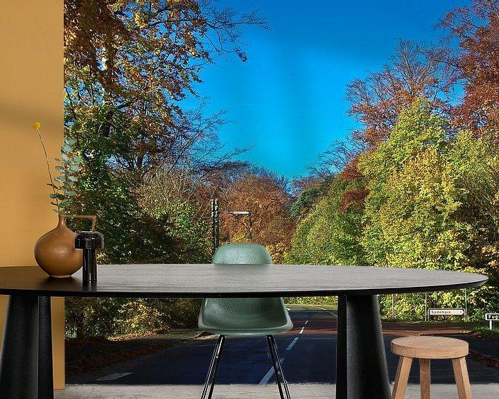 Sfeerimpressie behang: Weg in de herfst (Denemarken) van Norbert Sülzner