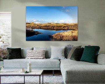 Duinlandschap in Bergen aan Zee, Noord-Holland, Nederland, Europa van WorldWidePhotoWeb