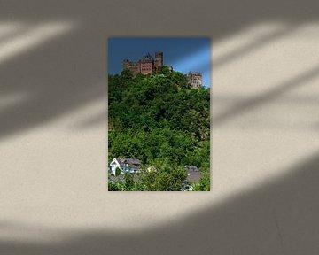 De Schönburg bij Oberwesel, Oberwesel, Unesco Werelderfgoed Obermittelrhein-dal, Rijnland-Palts, Dui van Torsten Krüger
