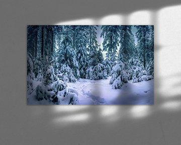 Verträumter Winter