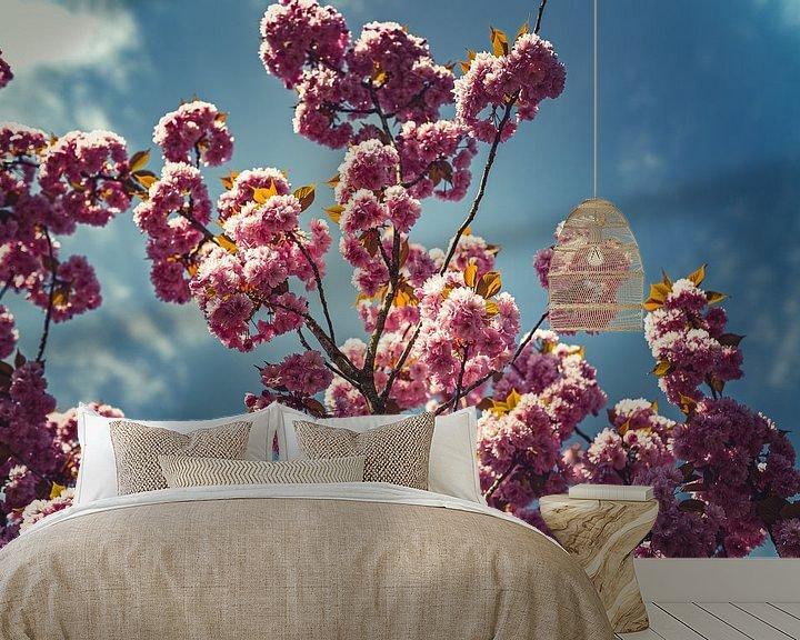 Beispiel fototapete: Blüten rosa 08 von FotoDennis.com