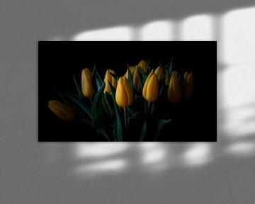 Frühlingsharmonie von Kirsten Warner
