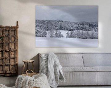Das Rheinland kann auch ein Wintertraum werden