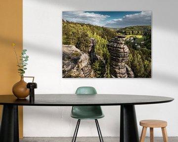 Bielatal in Saksisch Zwitserland - Uitzicht over de rotstorens van Pixelwerk