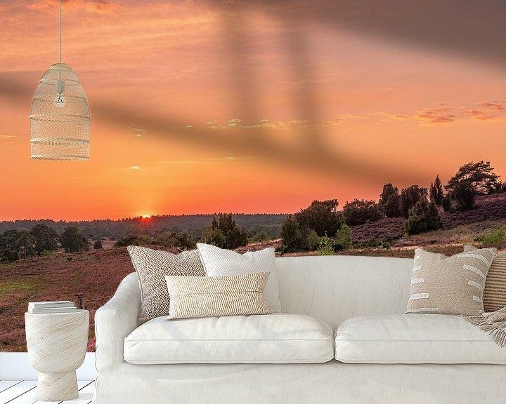 Beispiel fototapete: Sonnenuntergang in der Heide von Dieter Rabenstein