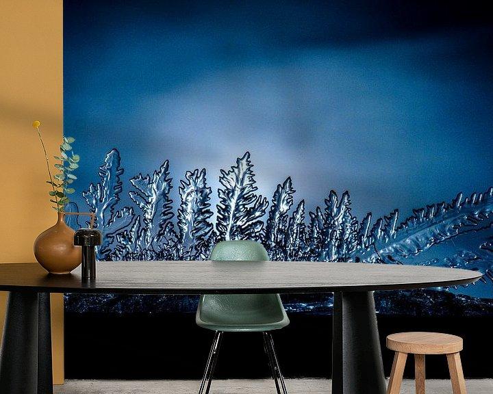 Beispiel fototapete: Eiskristalle, ein Wunder der Natur von Jim De Sitter
