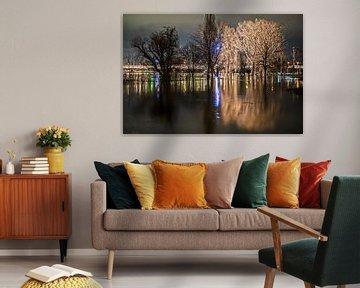 Overstroming in Keulen 2021 #3 van Stefan Havadi-Nagy