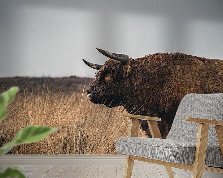 Sfeerimpressie behang: Schotse Hooglander van Colin van Wijk