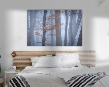Bomen in mist II van Thijs Friederich