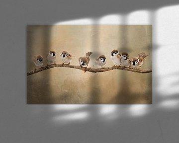 Vögel auf Ast von Diana van Tankeren